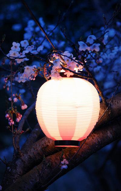 中国风   唯美中式灯笼美图