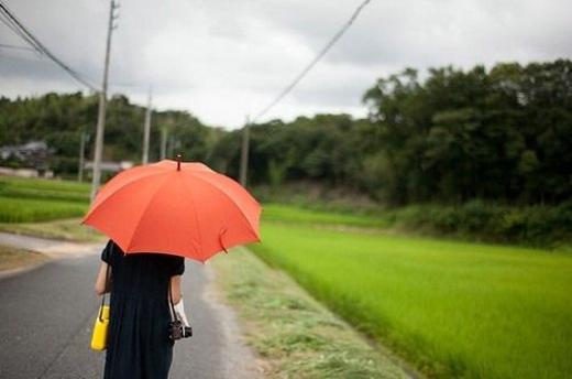 好看的意境唯美经典雨伞图片