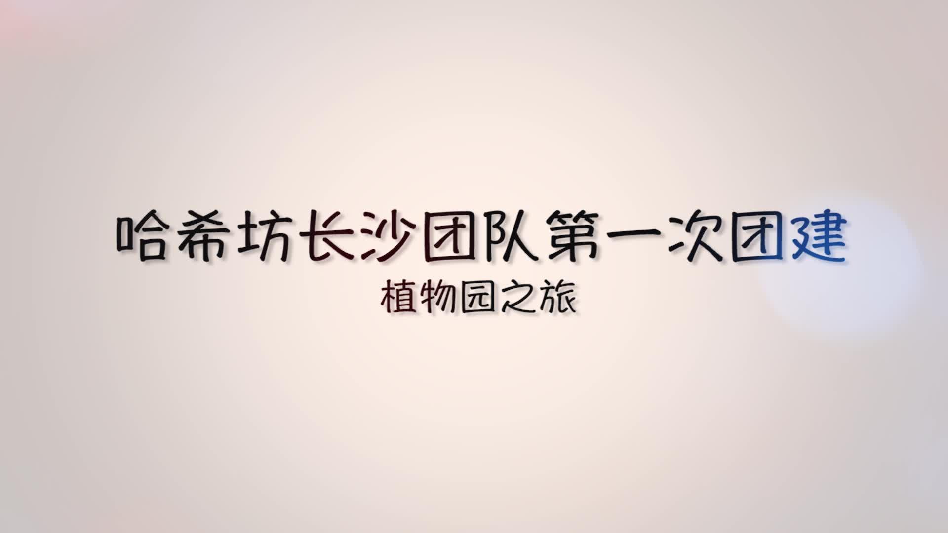 【团建】2020-03-25 长沙团队第一次团建视频